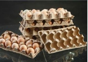 current development of China's egg tray machine